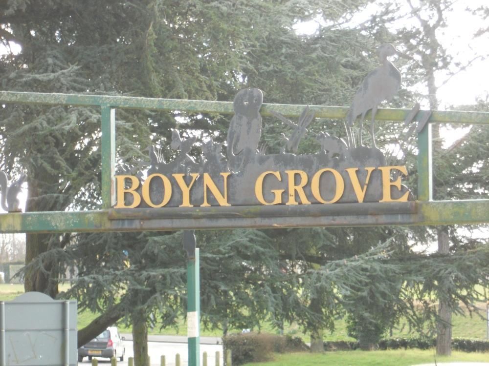 Boyn Grove open space