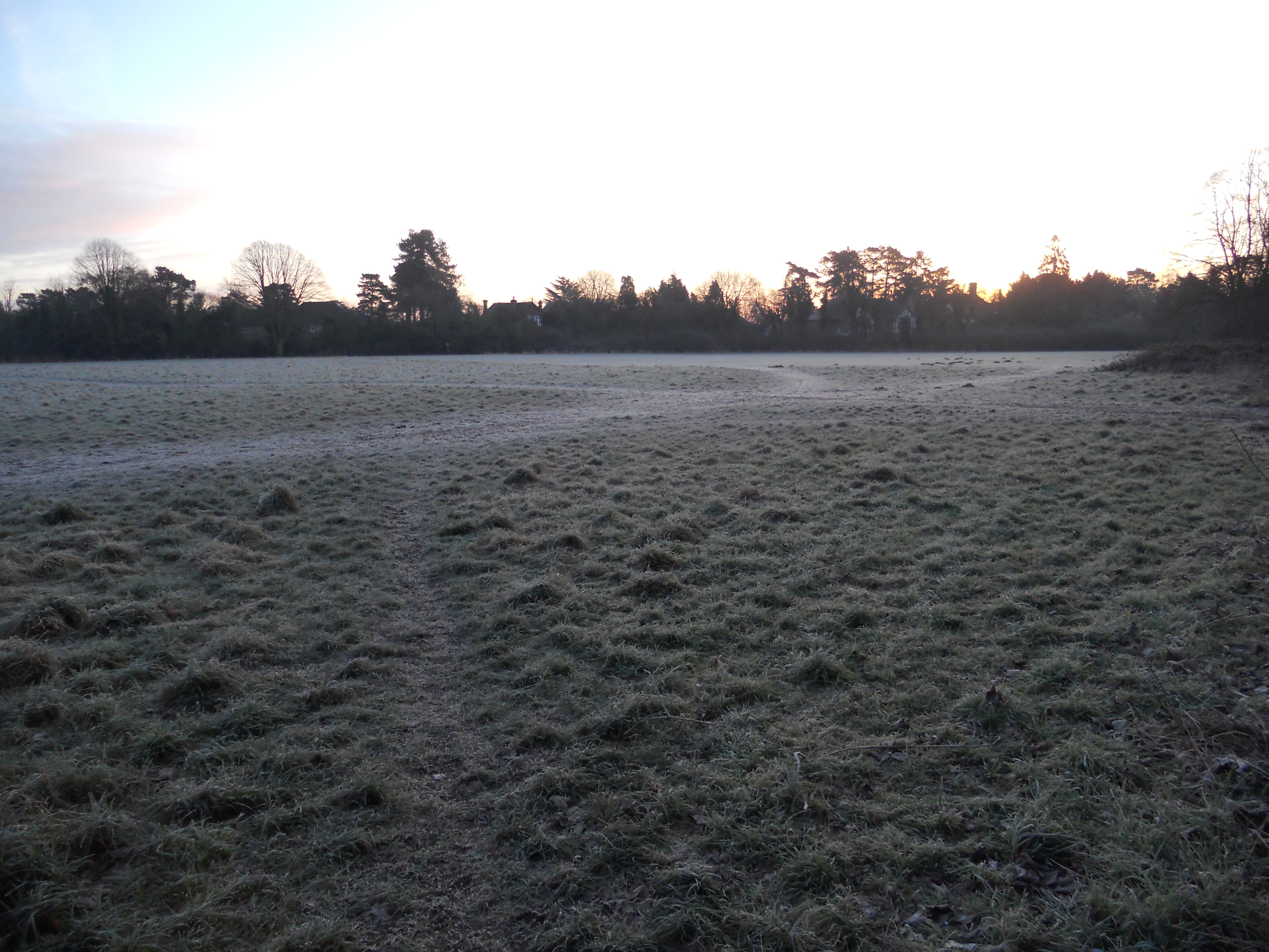 Maidenhead Thicket early morning frost
