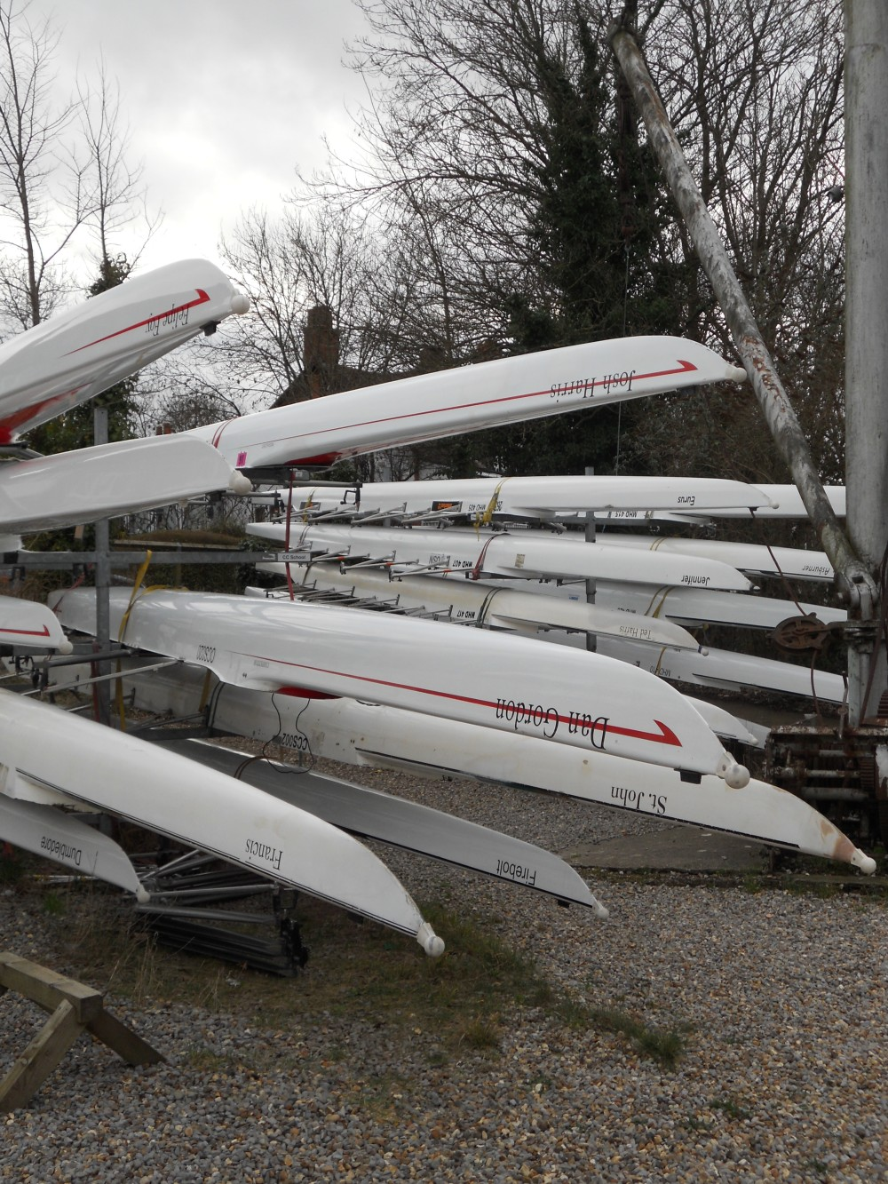 Rowing Club skulls