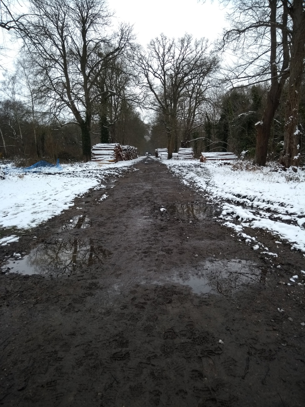 A very soggy muddy pathway !