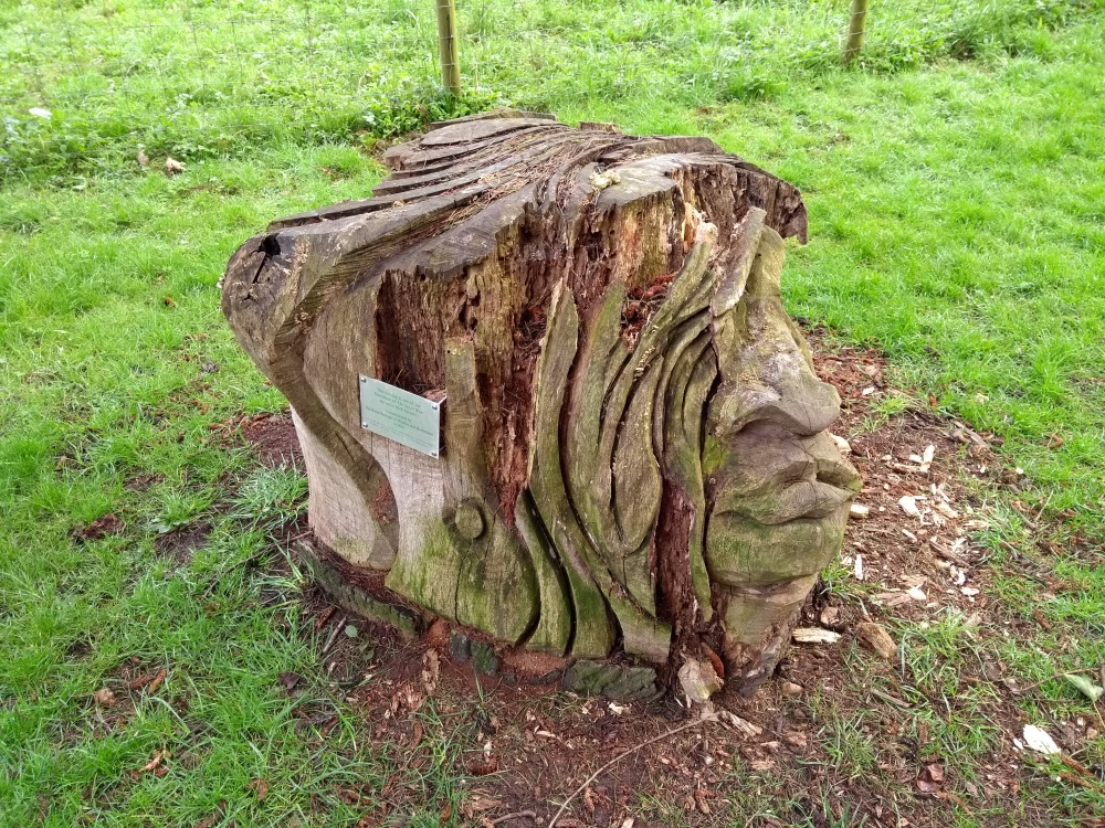 Guardian in Braywick Park