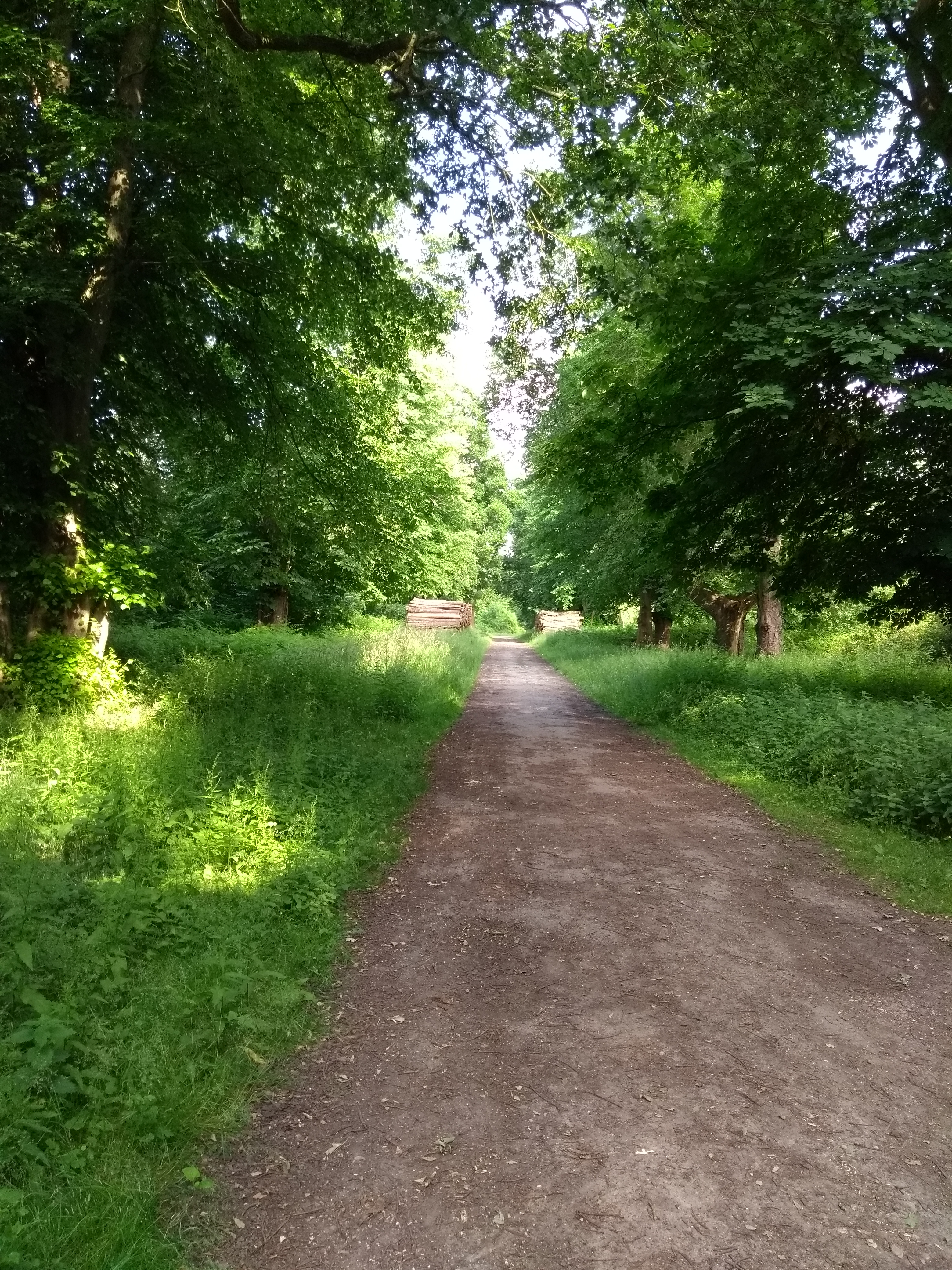 Footpath to Robin Hoods Arbour