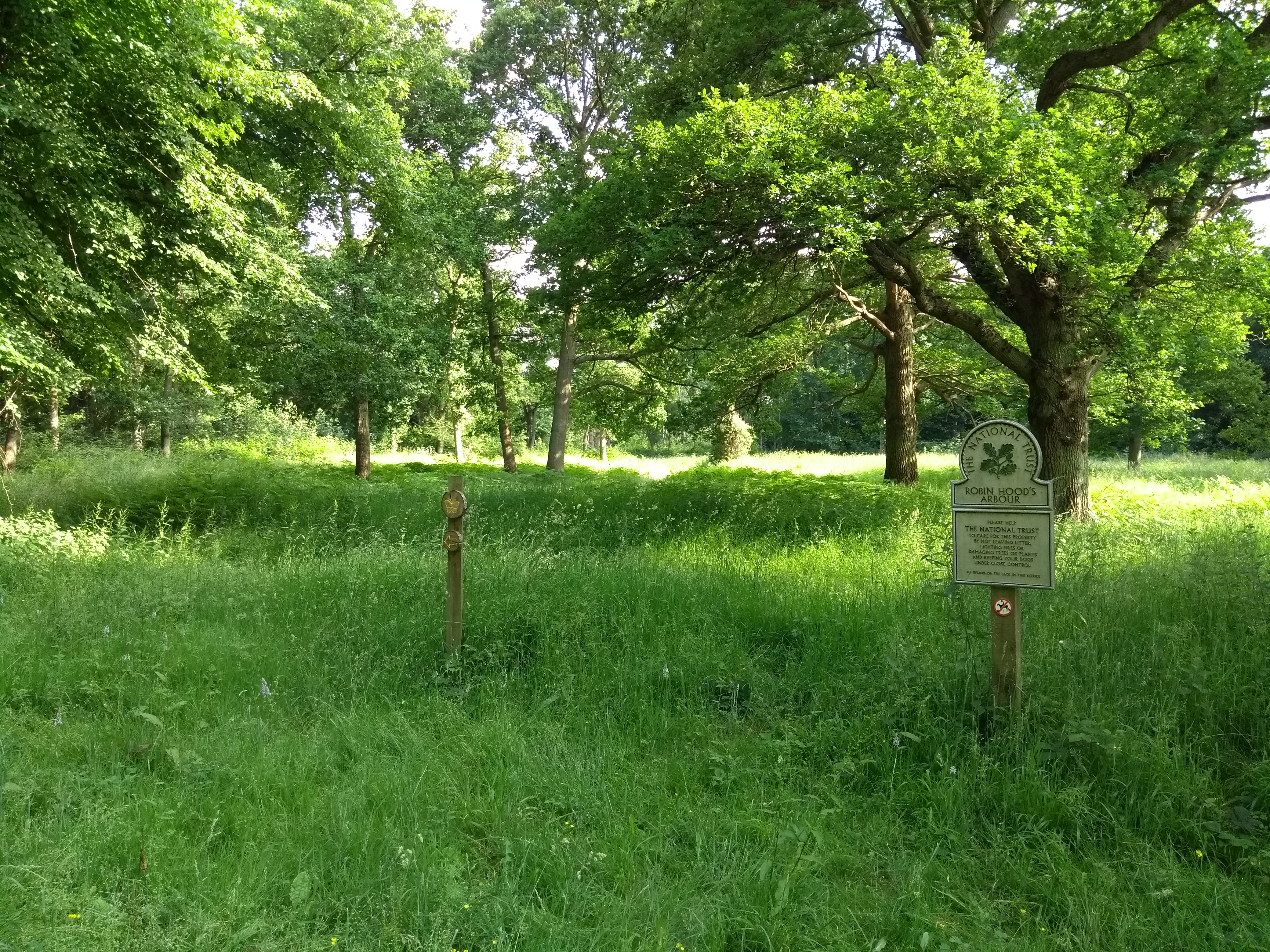 Robin Hoods Arbour, National Trust