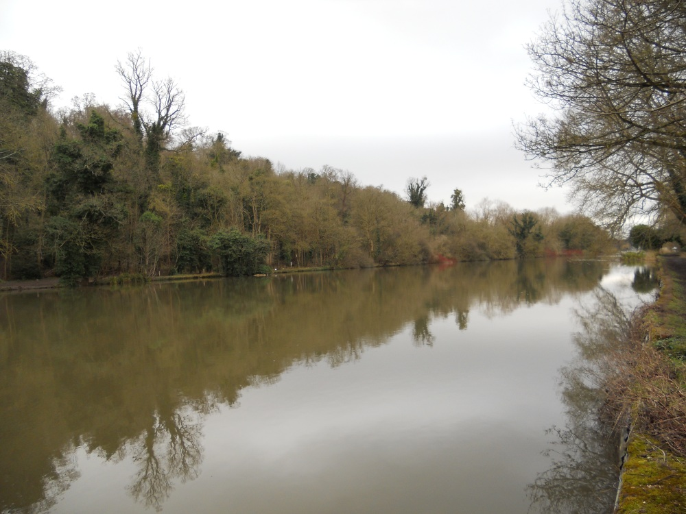 River Thames from the footpath towards Boulters Lock